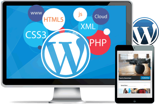 Customised web applications